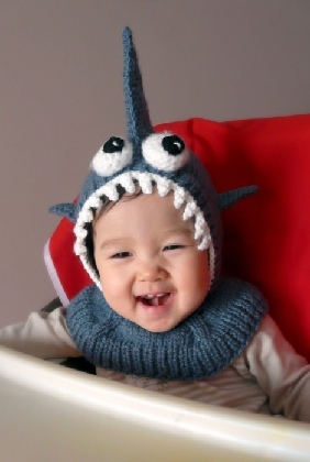 Shark baby